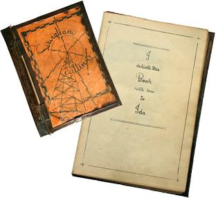 dickinson_diary-ida_angle_200