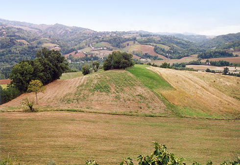countryside_1_r72
