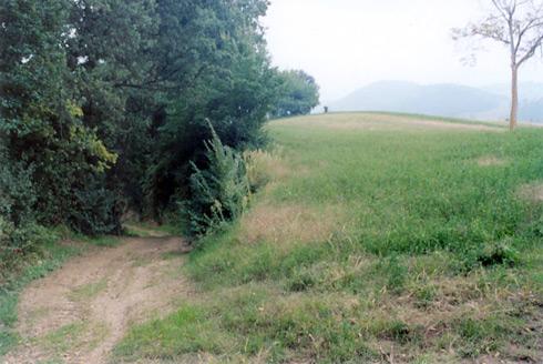 trail_r72