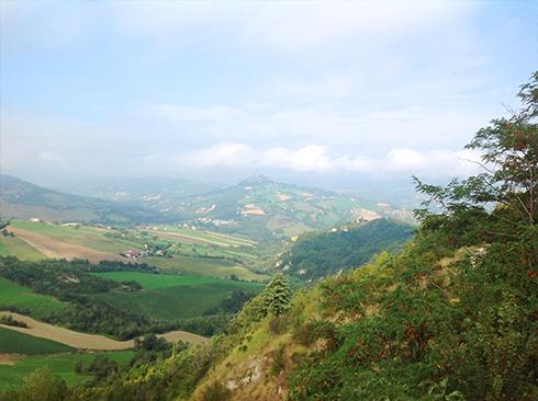 landscape_r72