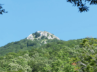 mount-accellica_r72